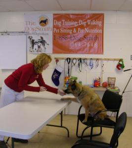 Canine Class Mates at The DogSmith Training Cen